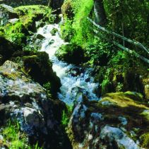 cascade-du-grand-moulin-900.jpg