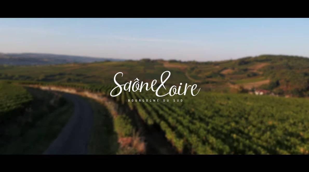 Escapades viticoles en Saône-et-Loire